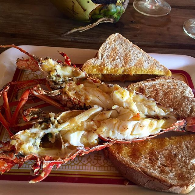 #FiremansLobsterPit = The best lobster we have ALL ever eaten in our lives #Negril #Jamaica #NotAlwaysHotelFood
