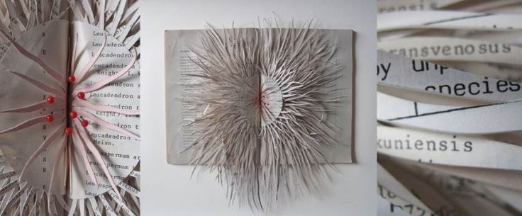 Altered Books Transformed into Sea-Like Organisms by Barbara Wildenboer, http://photovide.com/altered-books/