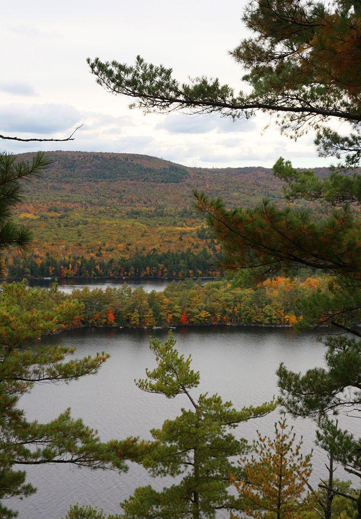 Maine :: Belgrade Lakes Region :: On Golden Pond was filmed here :: Susan Tuttle Photography
