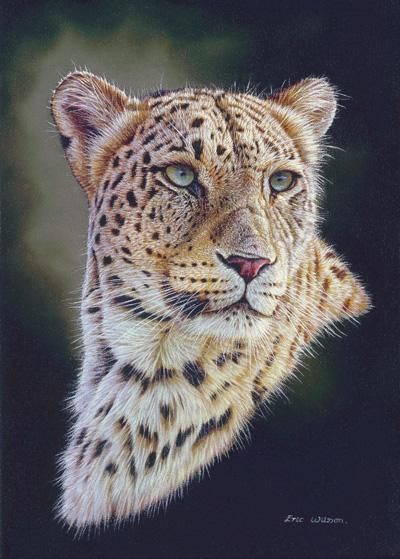 Persian Leopard portrait Painting by Eric Wilson - Persian Leopard portrait Fine…