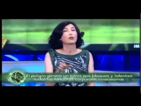 EVITAR EL ESTRES (ELSA PUNSET, el hormiguero)