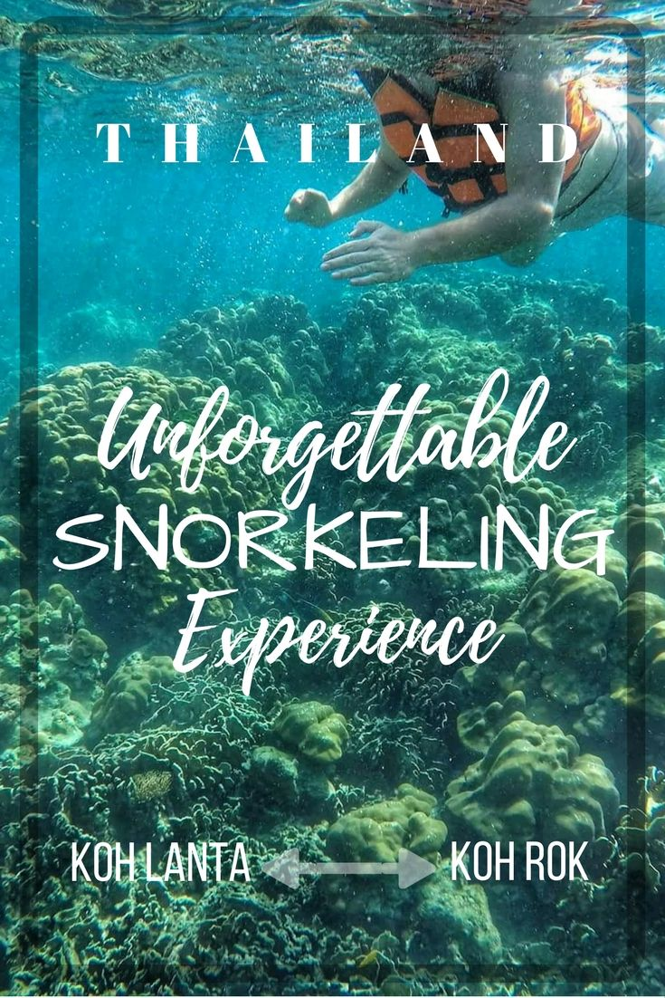 Thailand Travel & Things To Do: Snorkeling in Koh Lanta is on the list of top things to do when visiting Thailand. Take a Day Tour From Koh Lanta To Koh Rock, Speedboat To Koh Rok And Snorkeling. Our tour included: Tour Guide Transfer from-to hotel First class service Lunch Buffet (Thai menu with seasonal fruit) Snorkeling Equipment Life Jacket Insurance---see full article:https://togethertowherever.com/koh-lanta-snorkeling-tour-koh-rok/