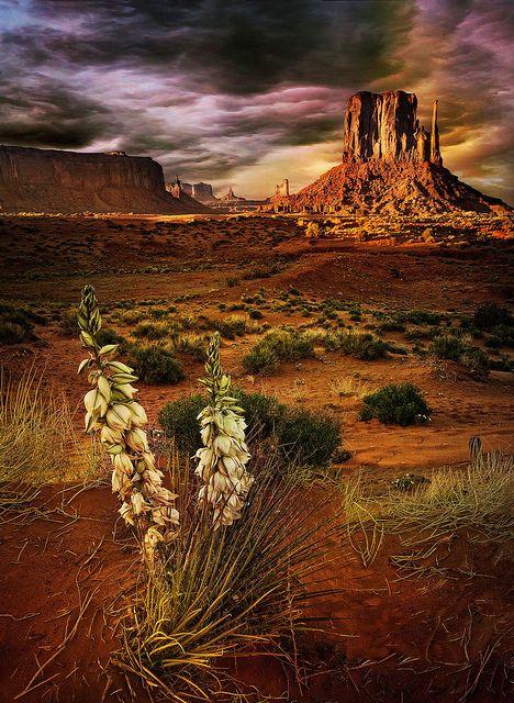 Monument Valley (Arizona)
