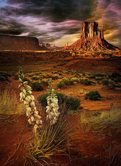 Monument Valley (Arizona)