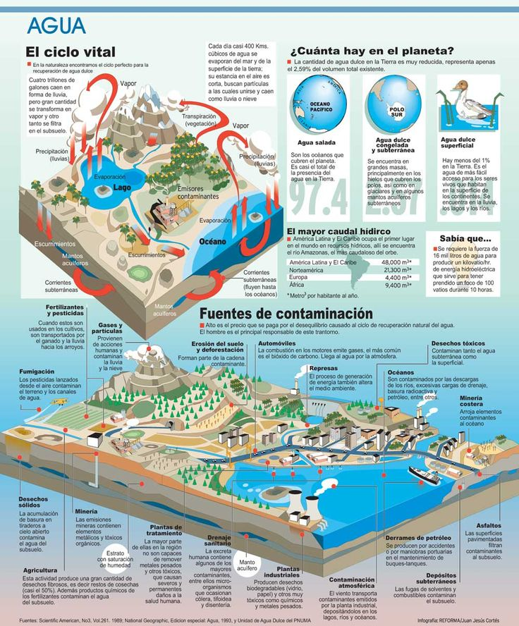 Ciclo vital del agua