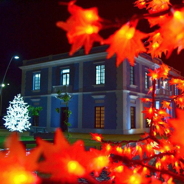 El sentir navideño se refleja en la renovada Intendencia y parques de la ciudad. Los invito a disfrutarlos en sana convivencia.