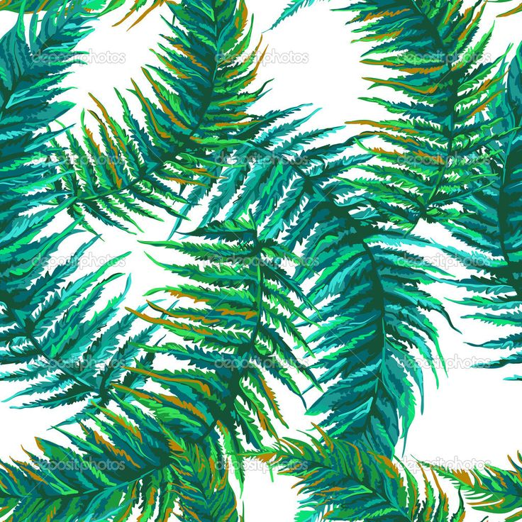 Экзотические тропические листья - Векторная картинка: 45419247