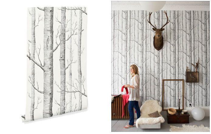 Woods Wallpaper | Beautiful, Paredes azuis esverdeadas e Árvore de