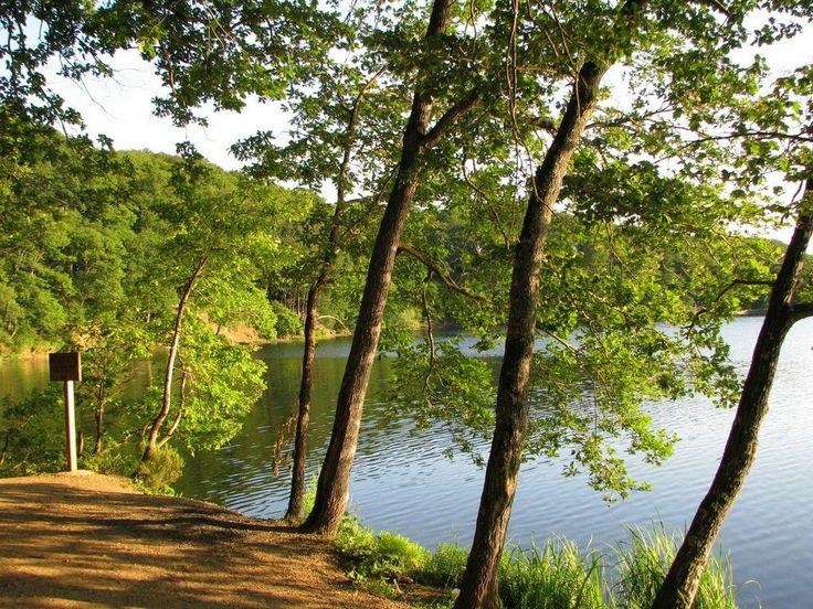 Belgrade Forest, Istanbul