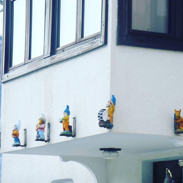 #settenani #local #tradizioni #chezhcdc #invda #vda #instalike #funny #biancaneve #fenis