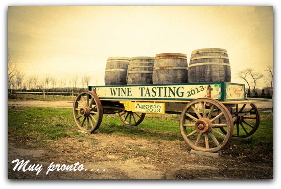Coming soon...  http://winemdqtasting.blogspot.com.ar/
