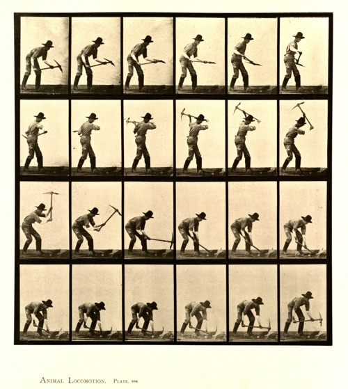 Eadweard Muybridge photos. Good reference for showing weight with movement .^^