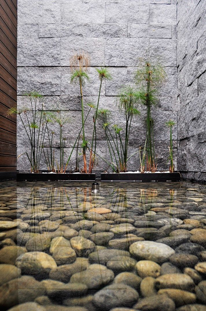 // CASA JAGUARUNDI by Harari Landscape Architecture