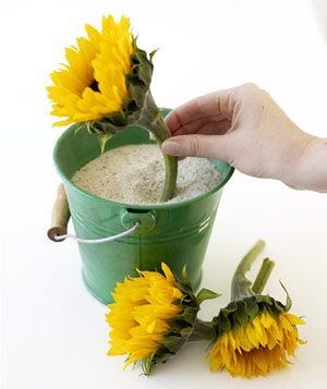Create a Beach Pail Centerpiece|Bring the beach to your backyard by filling colorful buckets with sand and sunflowers.