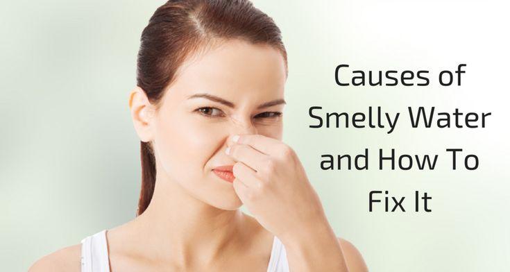 Stinky Water Your Odor Guide Odor, Stinky, Water
