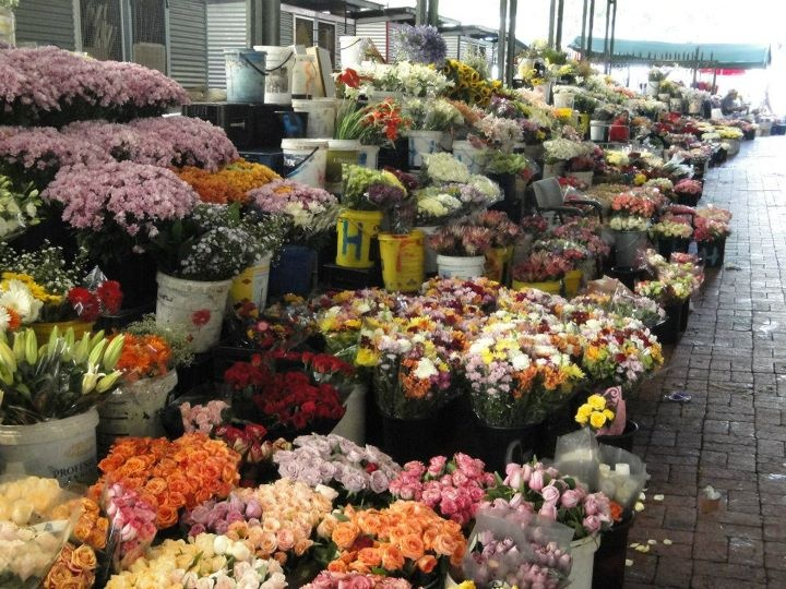 The beautiful flowers at the market on Adderley Street