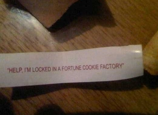 oh my goodness I would panic: Laughing, Help, Funny Shit, Jokes, Funny Stuff, Fortune Cookies, Design Bags, Hilarious, Factories