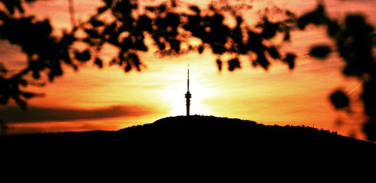 Tv torony     Fotó:Sasvári János