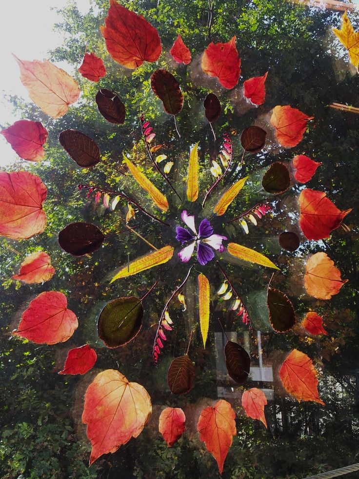 Window mandala using autumn natural materials- photo by Mato ≈≈