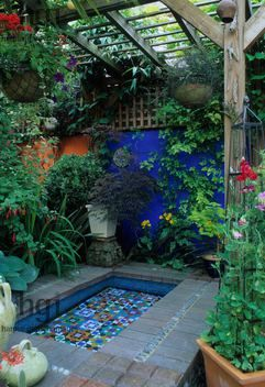 Moroccan style garden, blue painted wall, mosaic pool, brick pavers, containers, tiles, foliage & containers