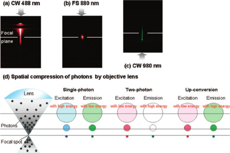 Figure 1. Principles and imaging modalities of single-photon emission, two-photon emission, and up-conversion luminescence (UCL). Photographs illustrate fluorescence in a cuvette of rhodamine B resulting from focused laser beams using single-photon excitation with continuous wave (CW) at 488 nm (a), two-photon excitation with femtosecond pulses (FS) at 880 nm (b), and UCL of UCNPs under CW excitation at 980 nm (c). In particular, the excitation path in panel c goes through the cuvette from…