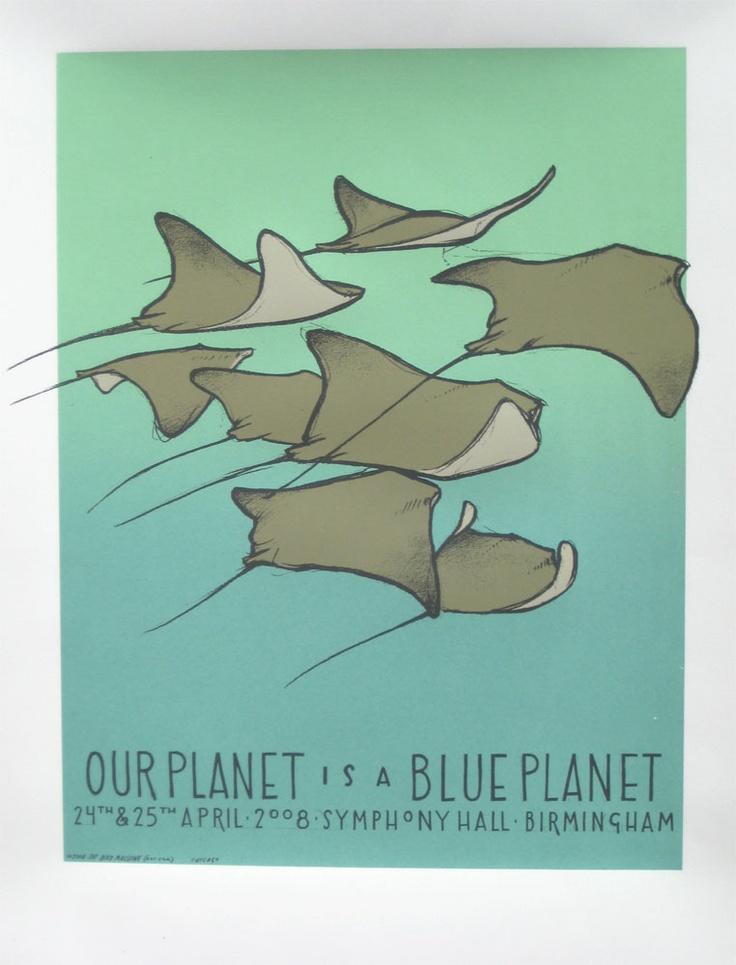 Blue Planet Live - Birmingham - Manta Rays