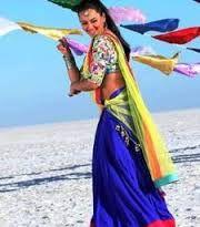 Image result for sonakshi sinha saree