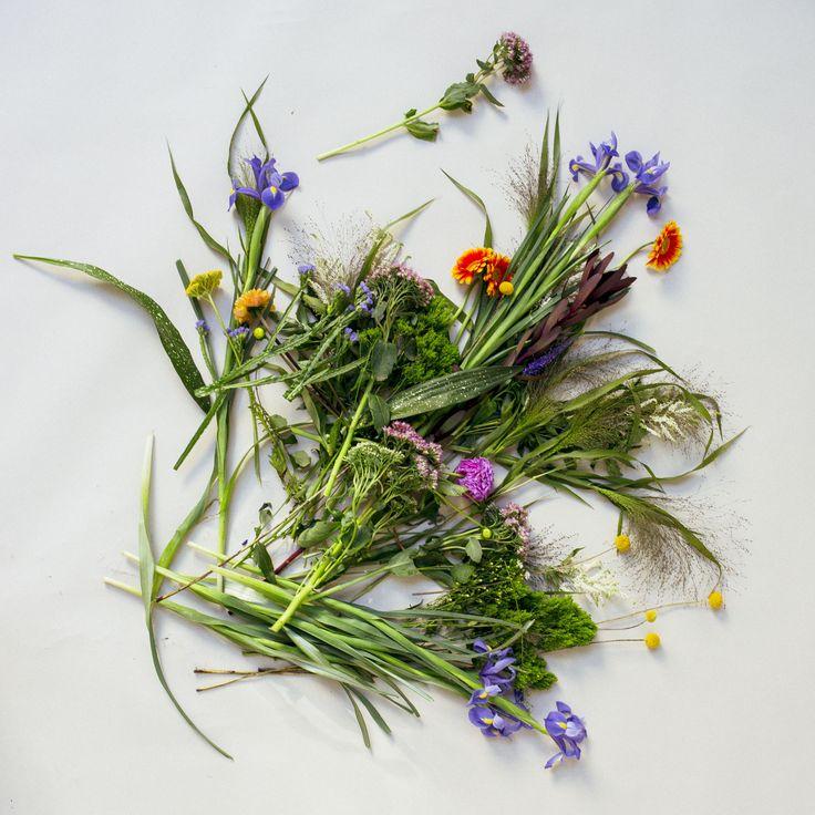 www.floraandlaura.com