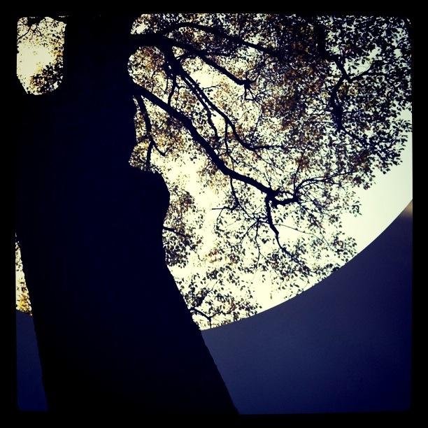 kawasaki ST. like a moon.