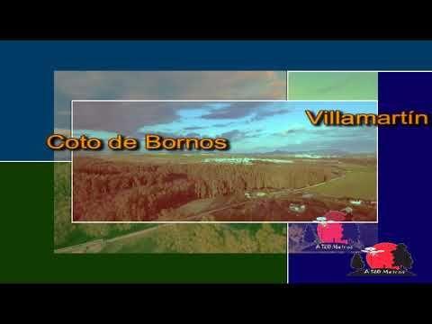 Viaducto Los veintiún ojos entre Bornos y Coto de Bornos (Cádiz) SÍGUEME EN INSTAGRAM: https://www.instagram.com/a120metros/ SIGUEME EN FACEBOOK: https://www.facebook.com/volando.acientoveintemetros.7 SIGUEME EN YOUTUBE: https://www.youtube.com/channel/UCoagexaPR9bd1L5XhYmUD9A 0