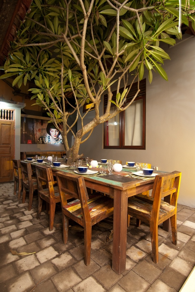 fabulous tree over dining table