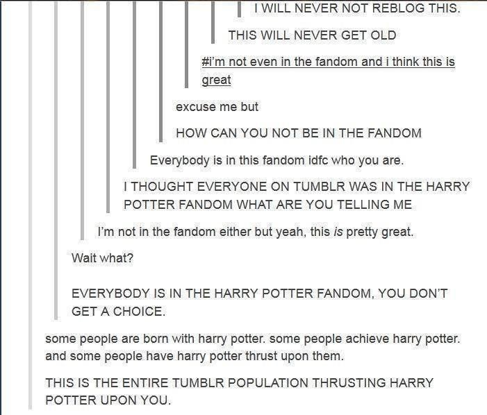 THE HARRY POTTER FANDOM and reasons why I absolutely love Tumblr.