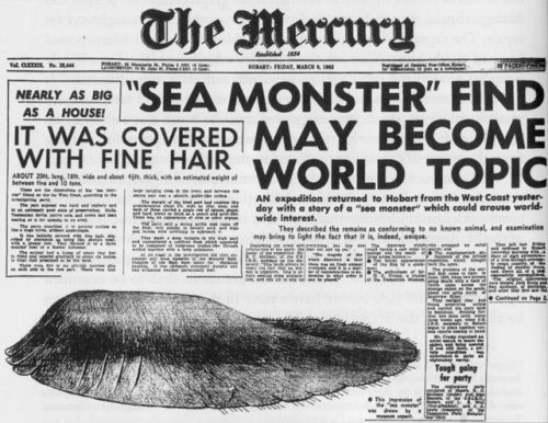 Cryptozoologie: Le monstre de Tasmanie - Frawsy