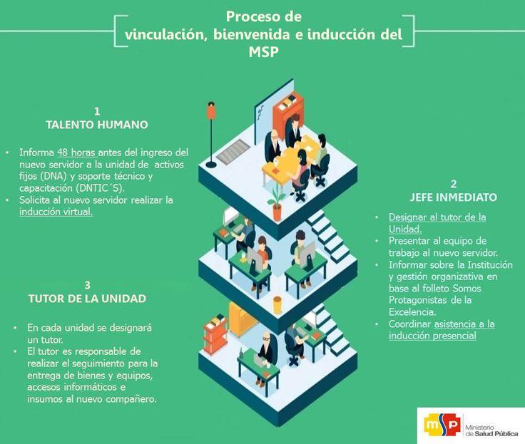 Infografía proceso somos salud