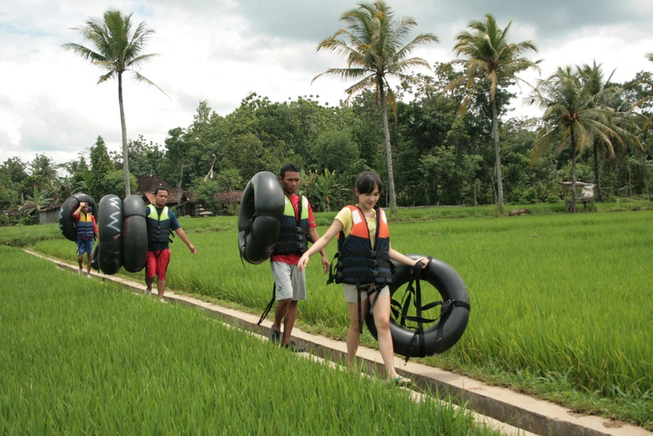 Walking in the middle of the rice fields to Oyo river. Gunung Kidul, Yogyakarta, Central Java, Indonesia.