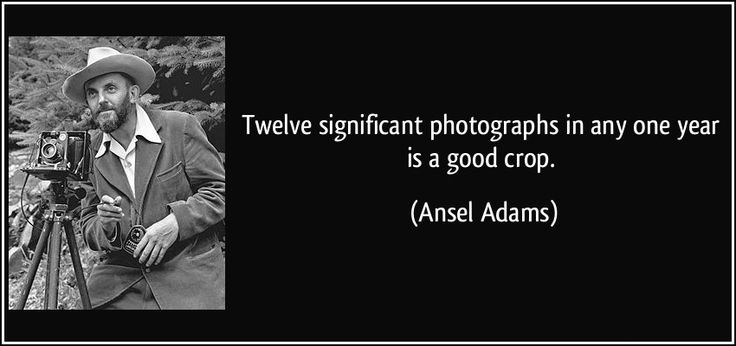 """Twelve significant #photographs in any one year is a good crop."""