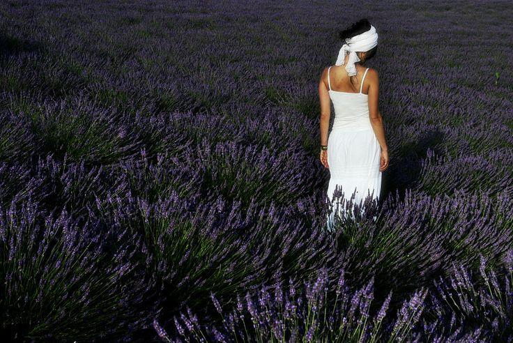 Photo lavender field by Patrizia Starnone on 500px