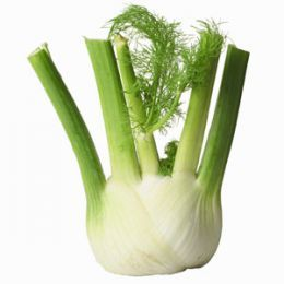 Do you want to learn how to prepare, grill and cook fennel? Here you will find some great recipes and ways to make easy meals using this very healthy vegetable. Try fennel soup, fennel salad and more.