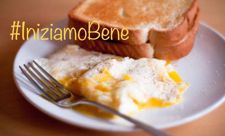 Amanti del #fitness e appassionati della #colazione #salata, stamattina #iniziamoBene con voi! Un super #boost d'#energia per affrontare meglio il #lunedì.