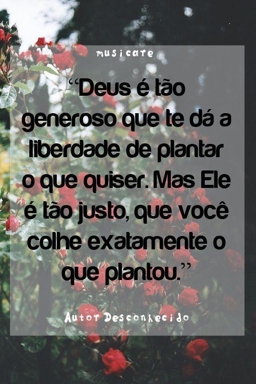 Deus é tão generoso que te dá a liberdade de plantar o que quiser. Mas Ele é tão justo, que você colhe exatamente o que plantou.: