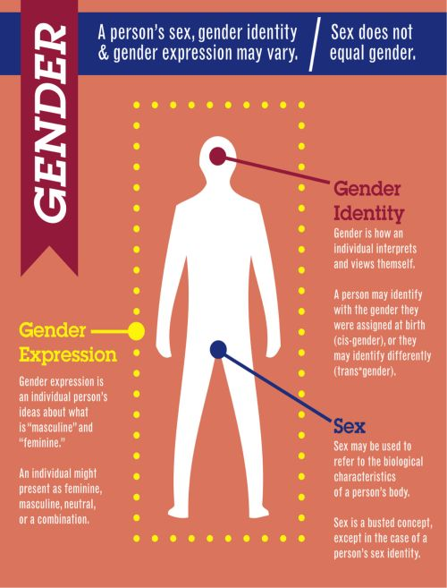 an overview of the social aspects of sex and gender Society created the role of gender and created an emphasis on the differences between the two genders alma gottlieb states: biological inevitability of the sex organs comes to stand for a perceived inevitability of social roles, expectations, and meanings (gottlieb, 167.
