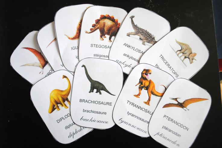 carte de nomenclature dinosaures