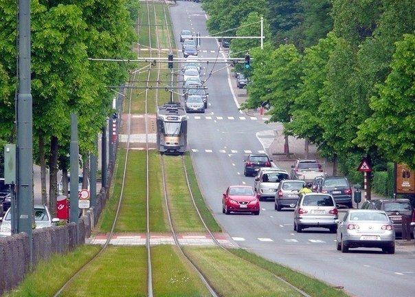 Зеленые трамвайные пути в Европе - Путешествуем вместе