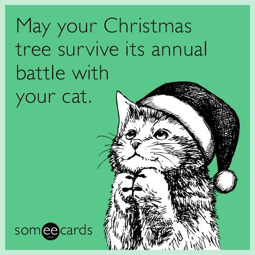 May your Christmas tree survive its annual battle with your cat. | Christmas Season Ecard