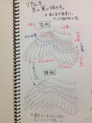 鳥の描き方まとめ - NAVER まとめ