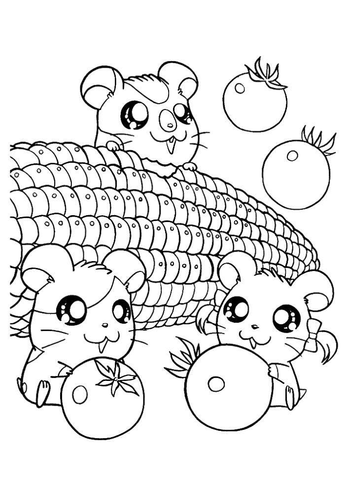 Cute Little Hamster Coloring Pages Cute Coloring Pages Cartoon