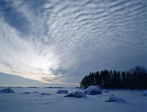 Linnansaari National Park, Savonlinna Finalnd. Picture: Timo kilpeläinen.