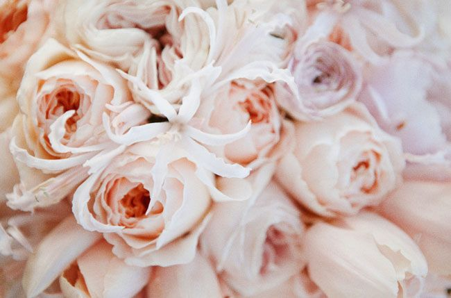 pink peony and juliet rose bouquet: Wedding Ideas, Roses, Wedding Flowers, Orchard Wedding, Bride