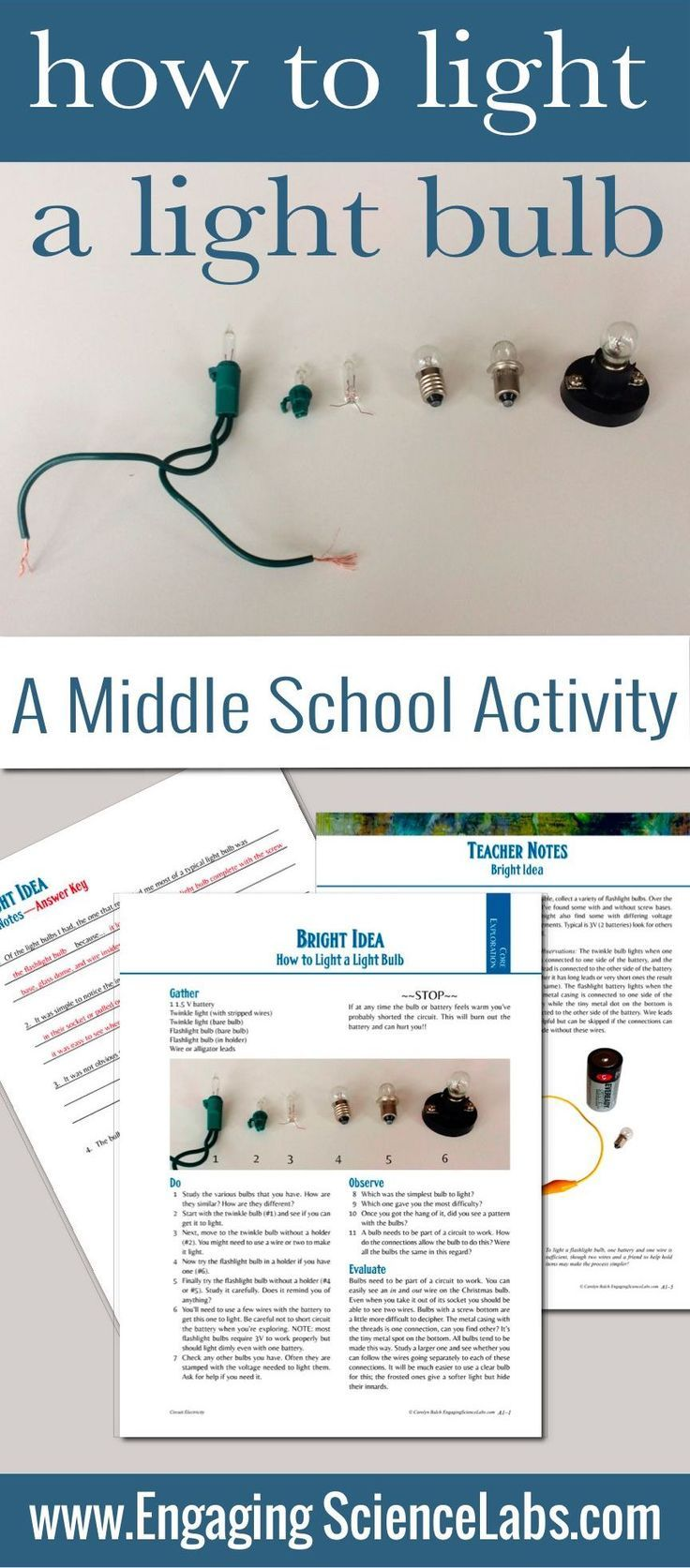 Electric Circuits Introduction Light A Bulb Hands On Lab Activity Circuit Using Flashlight Electronic Projects Lighting Variety Of Bulbs Is Great Way To Study Electricity And Middle School Students Will Love This Investigation