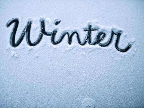 Snow/Winter♥
